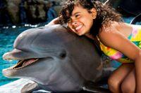Ocean World dolphin encounter