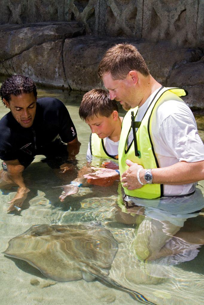 Ocean World stingray encounter